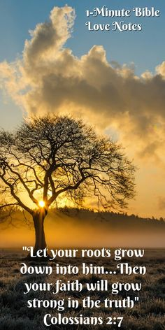 """Rooted and Established in Love - Ephesians 3:17. Have you ever known someone who """"lost their faith"""" when faced with a difficulty. This 1-minute devotion explains what they lacked and what we all need to keep growing in Christ."""