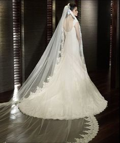 Wedding Bridal Veil White Ivory Edge White Length Comb Lace Long Cathedral New