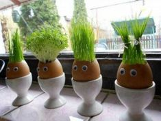 """If you love juicing wheat grass, why not try growing it in these creative """"planters"""" made from egg shells. Kids Crafts, Easter Crafts, Thanksgiving Crafts, Easter Gift, Easter Decor, Egg Shell Planters, Diy Planters, Diy Niños Manualidades, Egg Shells"""