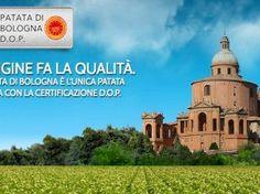 Patata di Bologna DOP festeggia 200 anni  #sanomangiare
