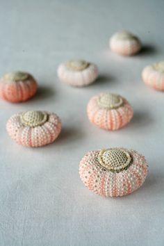 sea urchin pin cushion.