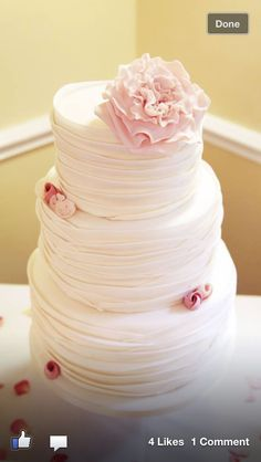 Cake with David Austin roses