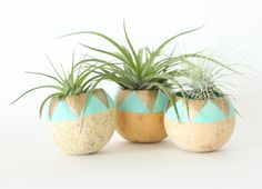 Air Plant Planter with Air Plant - Aqua & Gold Triangles on Etsy, $18.70 AUD