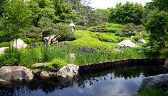 The Japanese Garden at Como Park Zoo and Conservatory in St. Paul. (Pioneer Press: Holly Peterson)