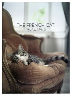 The French Cat, General, Books - The Museum Shop of The Art Institute of Chicago