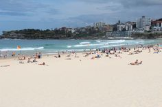Sydney's Best Beaches: Bondi to Coogee Coastal Walk - Routes and Trips Walking Map, Sydney Beaches, Coastal, Trips, Dolores Park, Australia, Travel, Traveling, Voyage