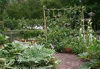 How cutie patoodie can a potager garden get....