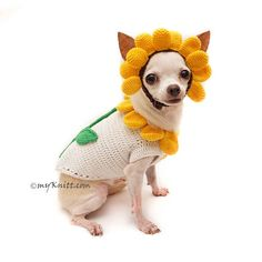 Cute Halloween Costume for Dogs. Sunflower Dog Costume with Matching Hair Accessory. Custom made dog costume are welcome. If you need size XS, S, or M, please contact me. I will make a new listing for you =) Please kindly check your pets measurements with my pattern size chart to make sure