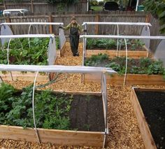 Nice raised beds!!