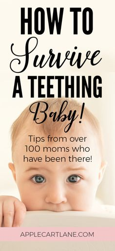 How to Survive a Teething Baby Over 100 moms share the remedies they've counted on to get through the dreaded phase of teething. Teething baby – baby hack- baby's first tooth – how to soothe a teething baby – natural teething remedies – 6 month old Baby Teething Symptoms, Baby Teething Remedies, Natural Teething Remedies, Teething Babies, Early Teething, 4 Month Old Baby, First Tooth, Baby Supplies, Natural Remedies