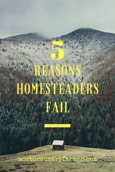 5 Reasons Homesteaders Fail.
