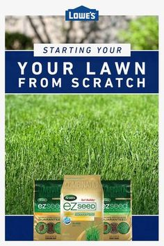 Learn the basics of starting your lawn from scratch. Growing Grass From Seed, Grass Seed Types, Shade Grass, Lawn Care, Green Grass, Lawn And Garden, Seeds, Yard, Outdoor