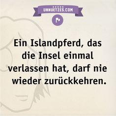 Die Gründe dafür hier: http://www.unnuetzes.com/wissen/9621/islandpferd/