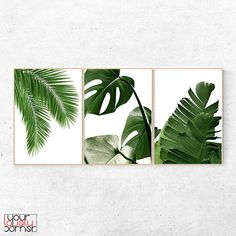 Palm Leaf Botanical Print Set Of Three Prints, Tropical Leaves Printable Wall Artwork, Inexperienced Leaves Digital Poster Obtain, Scandinavian Print Leaf Prints, Wall Art Prints, Poster Prints, Plant Painting, Tropical Decor, Tropical Colors, Tropical Interior, Scandinavian Art, Painted Leaves