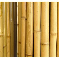 Backyard X-Scapes 6 ft. H x 8 ft. W x 1 in. D Natural Rolled Bamboo Fence Panel - - The Home Depot Bamboo Garden Fences, Backyard Fences, Backyard Projects, Yard Fencing, Garden Projects, Garden Ideas, Bamboo Panels, Fence Panels, Fences Alternative