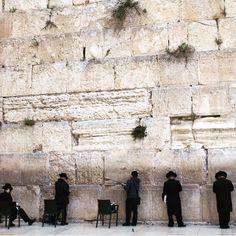 Men praying at the Western Wall.#alightisrael