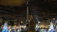 El árbol gigante de Trafalgar Square
