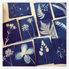 Moira Fuller Cyanotype course at Joe Cornish Gallery, uk