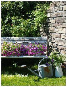 Isas Trädgård: Blommande soffa !