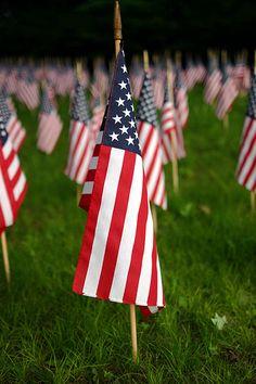 American flags by mavrix, via Flickr
