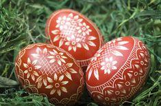 Gyorsan, fillérekből festhetsz szemet gyönyörködtető hímes tojásokat. Hogyan? Többek között hagymával és petrezselyemlevelekkel.