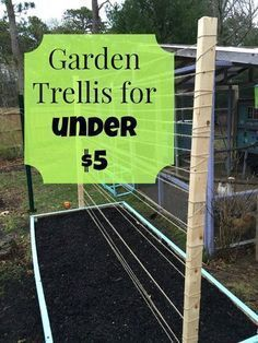 Some call it thrifty but I will admit it I am cheap Check out the trellis system I made for my raised garden beds for under 5 # Cheap Raised Garden Beds, Easy Garden, Raised Beds, Garden Ideas, Garden Hoe, Edible Garden, Herb Garden, Backyard Ideas, Garden Bed Layout