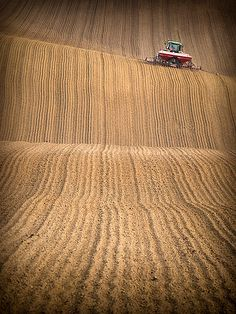 Farming field in Poland