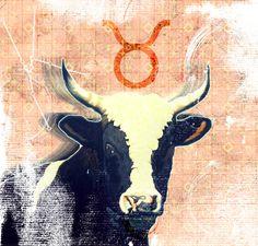 Taurus Taurus, Moose Art, Illustration, Animals, Animaux, Illustrations, Animal, Animales, Animais