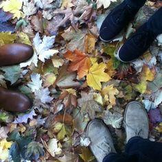 によるInstagramの写真ficklekitten - leaves lay thick in the lane