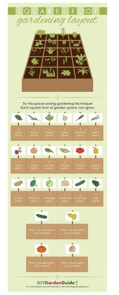 Raised Bed Garden Layout, Plants For Raised Beds, Raised Garden Beds, Garden Planting Layout, Small Garden Layout, Garden Layouts, Raised Bed Planting, Small Garden Plans, Fall Planting