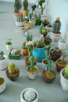 more great ideas for my succulents and cacti.  This might become an obsession, but don't tell Jane
