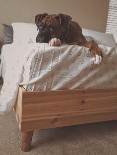 Simple king bed frame and a Boxer for Bill Best Bedding Sets, King Bedding Sets, Luxury Bedding Sets, Pretty Pegs, Bed Sets For Sale, King Bed Frame, New Beds, Diy Bed, Bed Styling