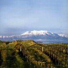 Temecula Wine Country, Temecula, California
