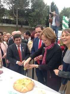 Almería recibirá parte de los 71 millones de ayudas para el olivar ecológico