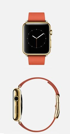 The Apple Watch.