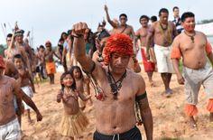 Millionen Bäumen sollen in Amazonien für Staudämme abgeholzt werden. Die Energie ist für Aluminiumhütten und Bergbaukonzerne verplant. Der Fluss Tapajós wird dafür zerstört. Die Mundurukú-Indianer wehren sich. Bitte unterstützen Sie die Regenwald-Kämpfer: https://www.regenwald.org/aktion/977/millionen-baeume-abholzen-fuer-aluminium-wir-sagen-nein