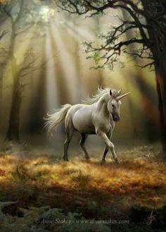 Art by Anne Stokes (Ironshod) Unicorn Fantasy Myth Mythical Mystical Legend Licorne Enchantment Einhorn unicorno unicornio Единорог jednorožec Eenhoorn yksisarvinen jednorożca unicórnio Egyszarvú Kirin Fantasy Unicorn, Unicorn And Fairies, Unicorn Horse, Unicorns And Mermaids, Unicorn Art, Fantasy Art, White Unicorn, Rainbow Unicorn, Fantasy Forest