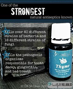 Antiseptic---we put Thyme on my hubby's big toes at bedtime---ELIMINATES all snoring and apnea!!!!