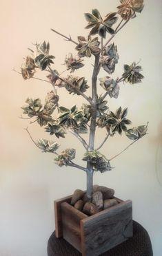 Zur Hochzeit Einen Baum Mit Geldscheinen Und Munzen Verschenken