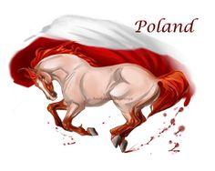 Horse Hetalia:  Poland by MUSONART