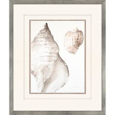 A blissfully neutral palette and seashell motif make the Paragon Tonal Shell on Cream I Framed Wall Art perfect for your upscale coastal décor. Metal Wall Art, Framed Wall Art, Painting Prints, Art Prints, Canvas Art, Canvas Prints, Spring Painting, Beach Art, Wood Print