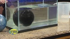 Density of Water and Floating Bowling Balls