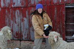 Marilyn Andersen, who raises angora goats and llamas for wool near Story City, Iowa, is one of many farmers and ranchers entering the individual health insurance marketplace. (Amy Mayer/Harvest Public Medi