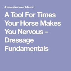 A Tool For Times Your Horse Makes You Nervous - Dressage Fundamentals Horse Saddle Pads, Horse Saddles, My Horse, Horses, Horse Exercises, Horse Books, Horse Training Tips, Riding Lessons, Dressage