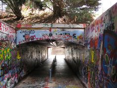 NC State University by Jonathan_Hawkins, via Flickr.  Free Expression Tunnel