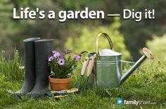 How to start a backyard garden