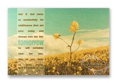 """Christian Wall & Desk Art - Vintage Photography Flower Field """"Tomorrow"""" with Bible Scripture by anytimeart Turquoise, Yellow Wild Flower, Sky, Field Photography Gifts, Vintage Photography, Christian Art Gifts, Wall Desk, Into The Fire, Where The Heart Is, Bible Scriptures, Wild Flowers, Sky"""