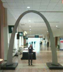 """Elise, our marketing coordinator, said """"I thought the arch would be much bigger than this?"""" Another bubble burst! haha"""