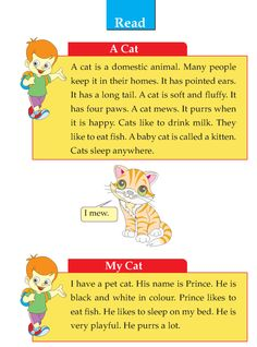 Writing skill - grade 1 - descriptive - a cat English Grammar For Kids, Learning English For Kids, Teaching English Grammar, English Worksheets For Kids, English Lessons For Kids, English Writing Skills, English Reading, English Language Learning, Learn English Words