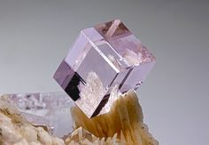 Gorgeous and perfect fluorite crystal. Typical of this locality, flattened crystals of baryte form the base for this perfect cube. Baryte has a pale pink colour. This specimen belongs to an incredible find happened in Minerals And Gemstones, Rocks And Minerals, Natural Crystals, Stones And Crystals, Gem Stones, Beautiful Rocks, Mineral Stone, Rocks And Gems, Creations
